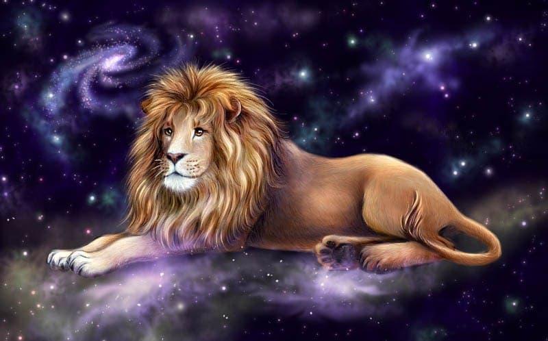 Узнайте какие женщины нужны мужчине льву