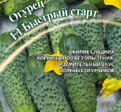 rannie-sorta-ogurtsov-dlya-teplits