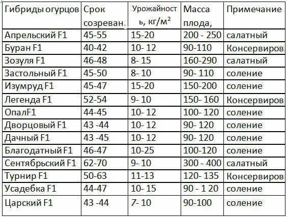 sorta_ogyrcov
