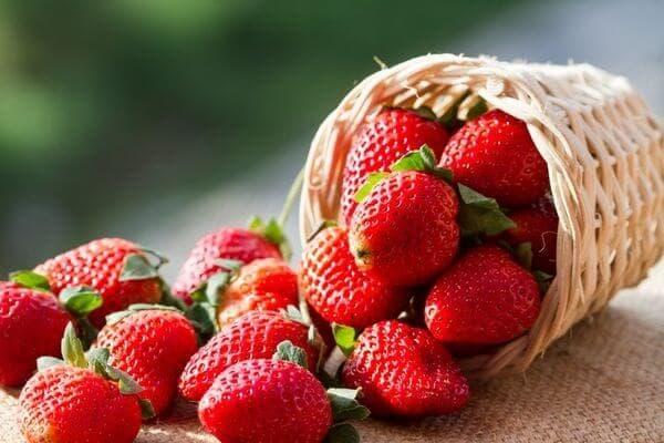 Все о клубнике — факты и домыслы, вред и польза королевы ягод