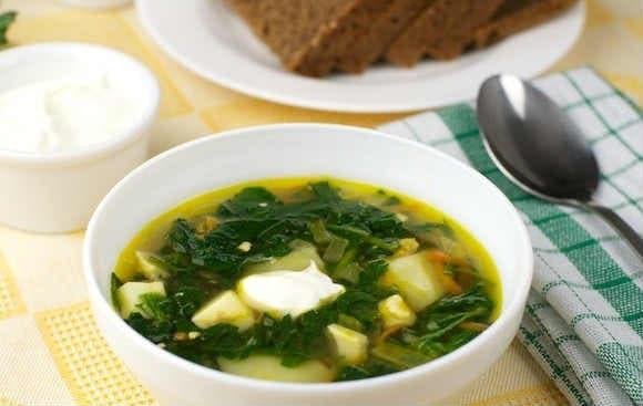 Суп из крапивы: рецепты вкусные от жгучей красавицы