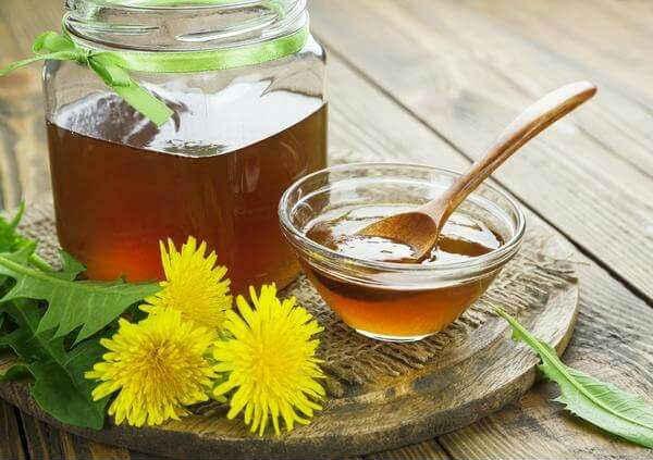 Мед из одуванчиков— рецепты, полезные свойства и противопоказания