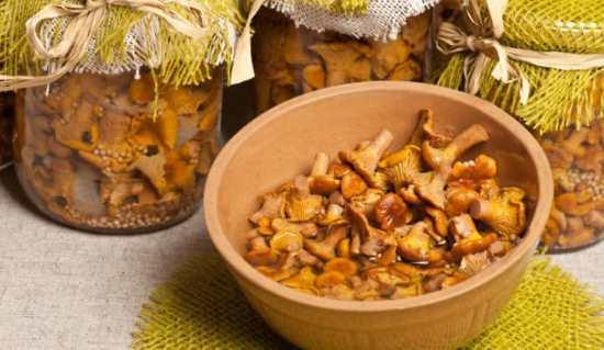 Как заготовить на зиму грибы лисички, проверенные рецепты от опытного грибника