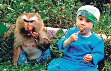 дети и обезьяны