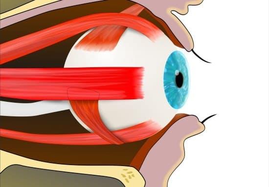 Профессии для человека с плохим зрением