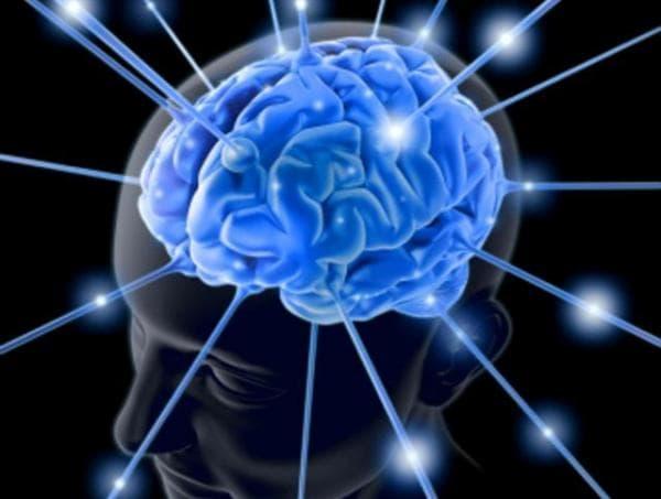 ритмы мозга