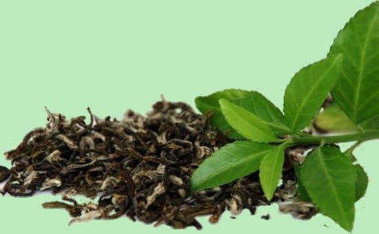 Сухие листья чая