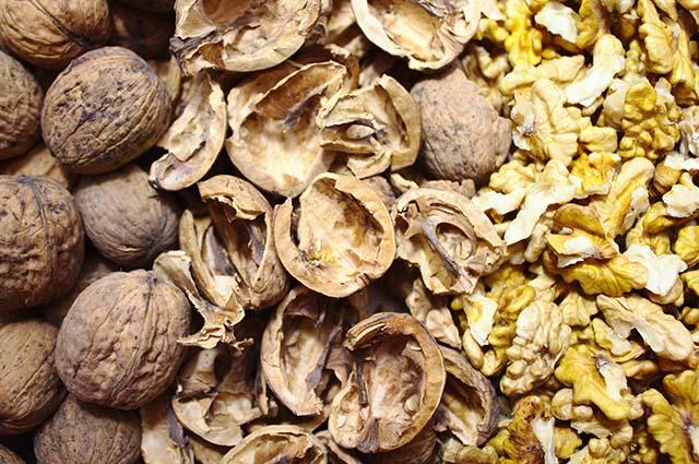 Скорлупа и ядра грецкого ореха