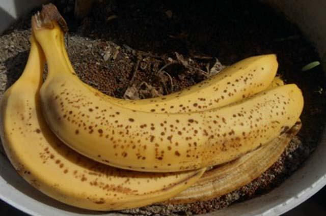 Бананы на земле